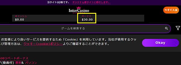インターカジノ_登録6